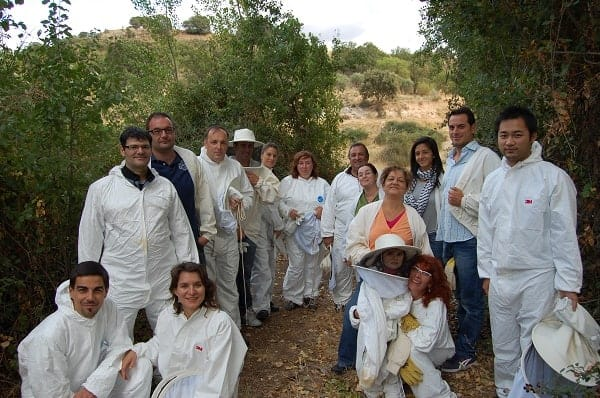 El papel de la apicultura en la sociedad