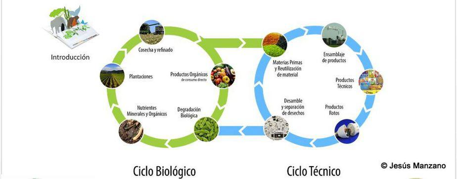 Abejas y Biodiversidad - Intro 3