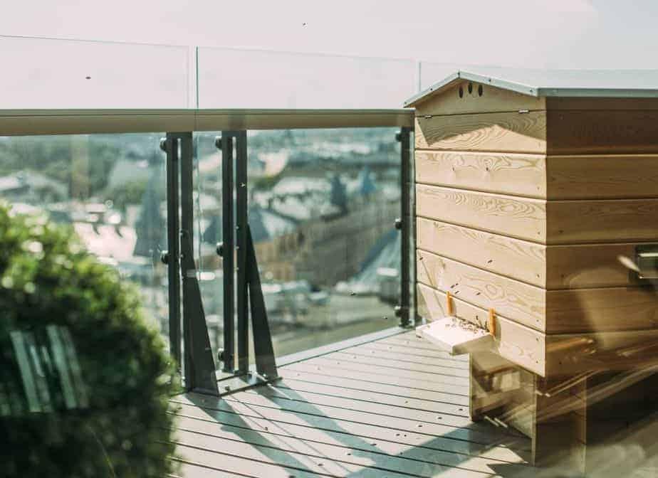 colmena con abejas en las terrazas urbanas