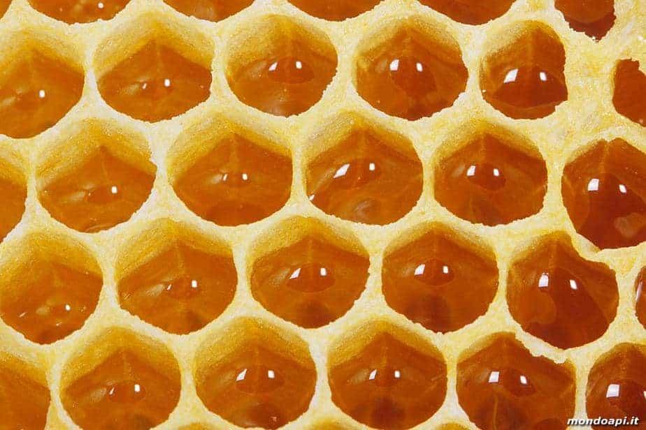 Funciones de panal de cera de las abejas - ecocolmena