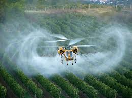Fumigación con pesticidas que matan a las abejas y otros polinizadores